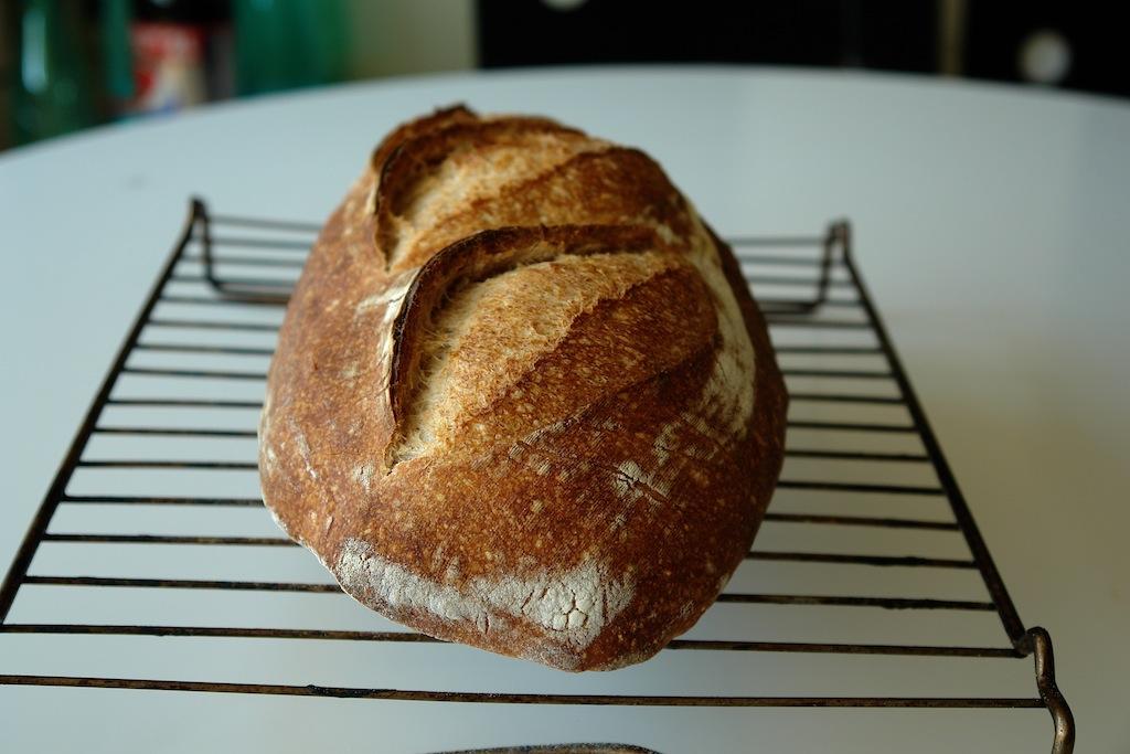 paine alba 01 Paine simpla cu maia   metoda 1:2:3