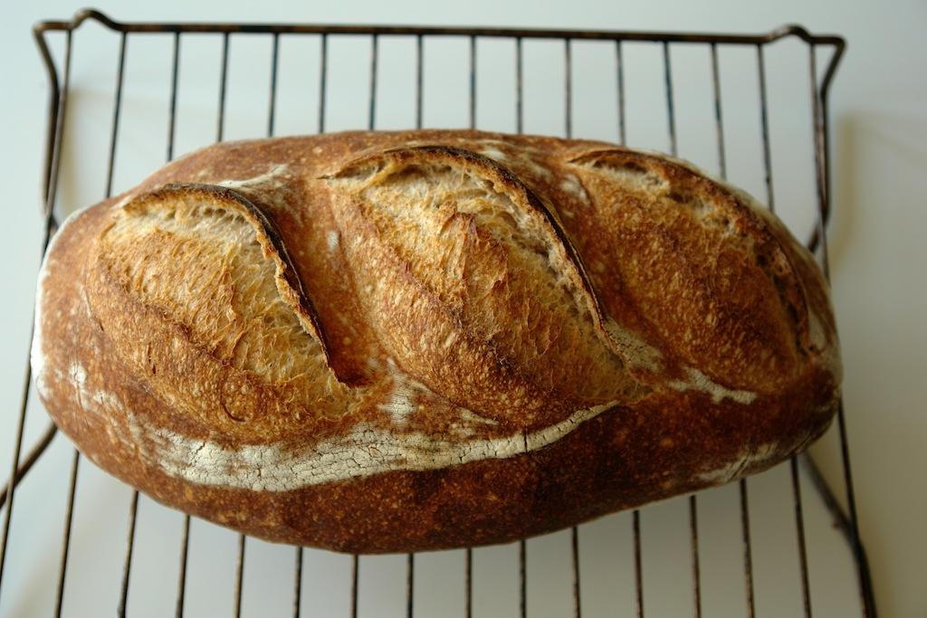 paine alba 02 Paine simpla cu maia   metoda 1:2:3
