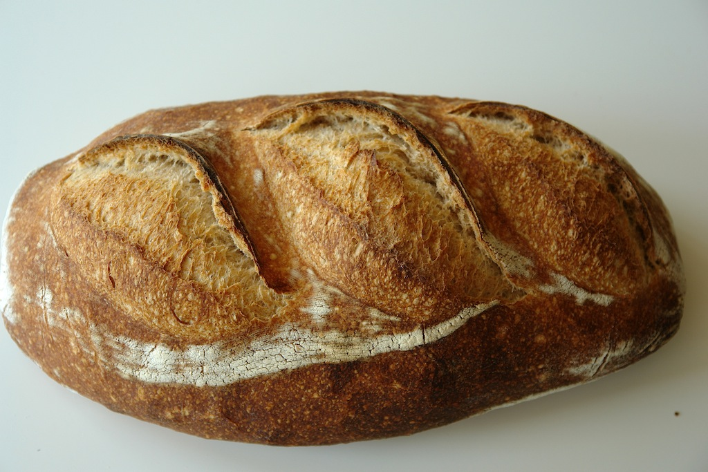 paine alba 08