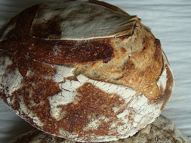 paine de casa 1 Painea cu gust de acasa   Simple Sourdough Bread