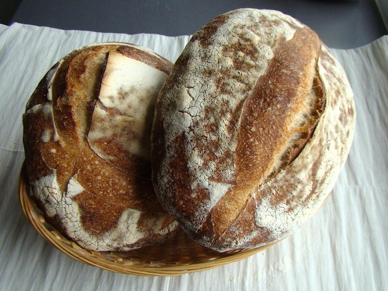 paine de casa 5 Painea cu gust de acasa   Simple Sourdough Bread