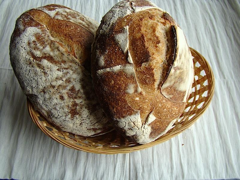 paine de casa 6 Painea cu gust de acasa   Simple Sourdough Bread