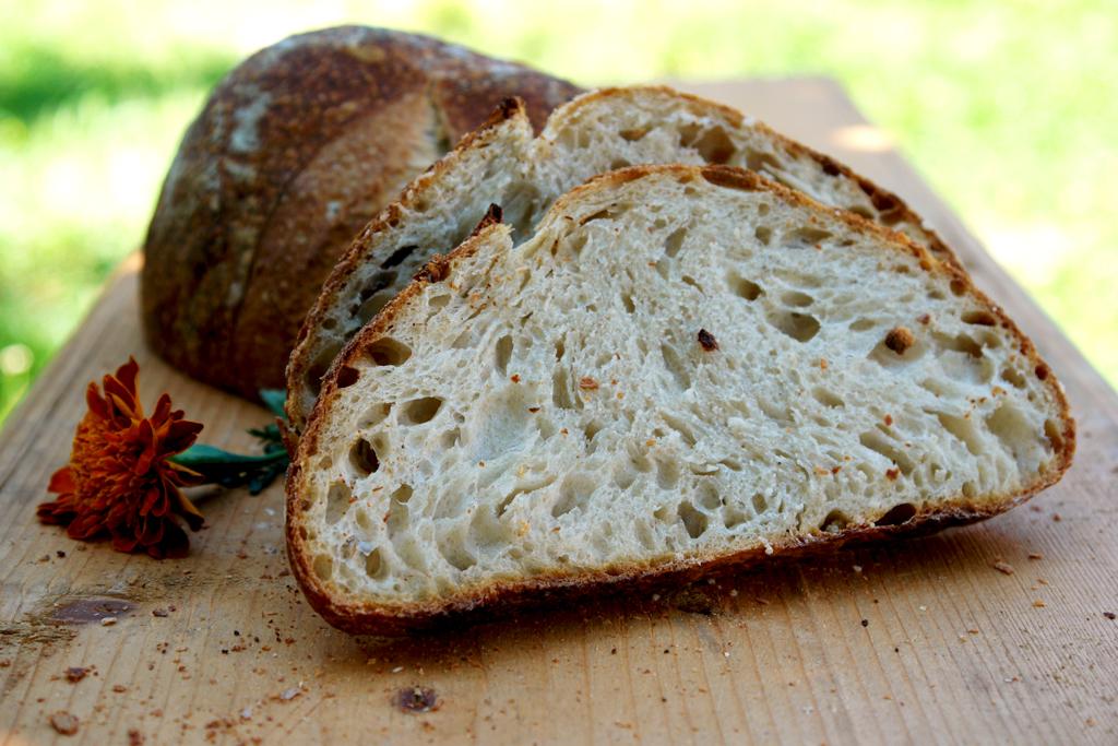 bread end of summer 031 Paine cu Drojdie din Apa Fermentata cu Mere   AYW Bread