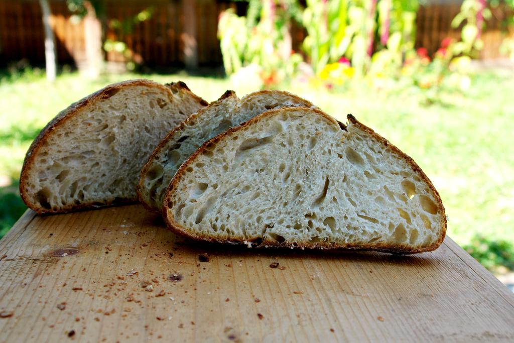 bread end of summer 04 Paine cu Drojdie din Apa Fermentata cu Mere   AYW Bread