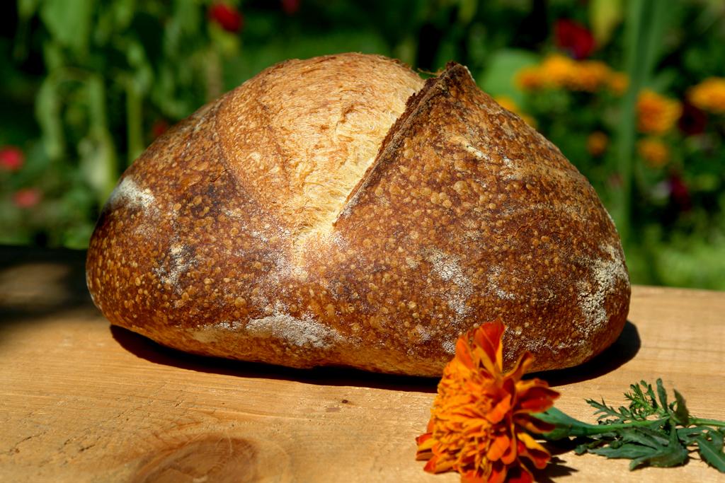 bread end of summer 071 Paine cu Drojdie din Apa Fermentata cu Mere   AYW Bread