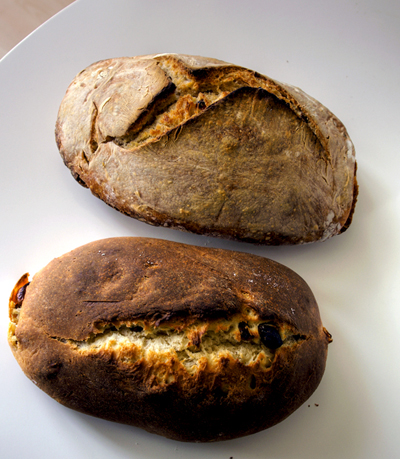 paine de incepator 1 Alte cateva lucruri despre paine, pe care le am invatat pe parcurs