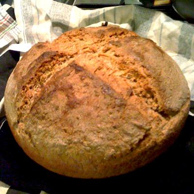 paine de incepator 3 Alte cateva lucruri despre paine, pe care le am invatat pe parcurs